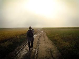 David Marcu - wanderer